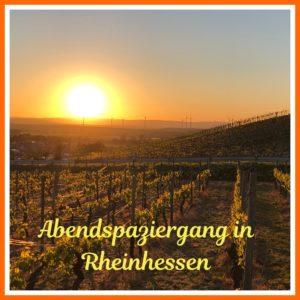 Untergehende Sonne über den Weinbergen in Rheinhessen