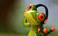 Frosch mit Kopfhörer