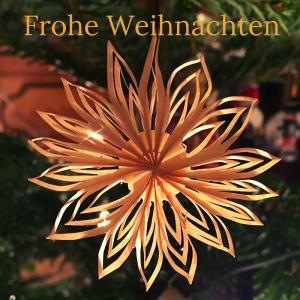 Papierstern am Christbaum - Frohe Weihnachten